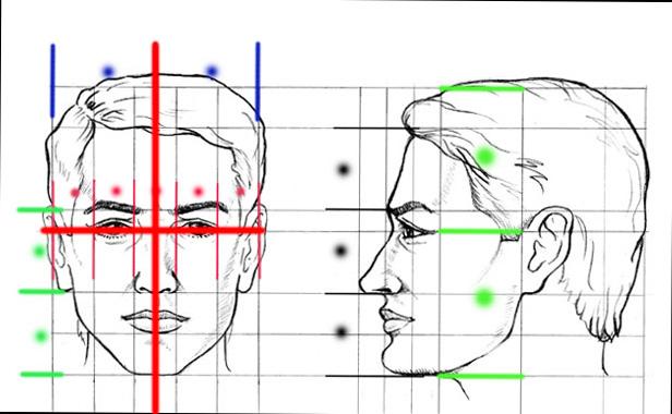 retrato-medidas2